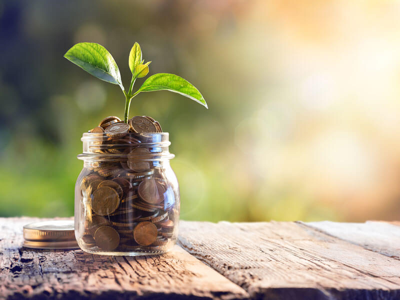 Jar full of money on a wood deck with a small plant growing out of it.